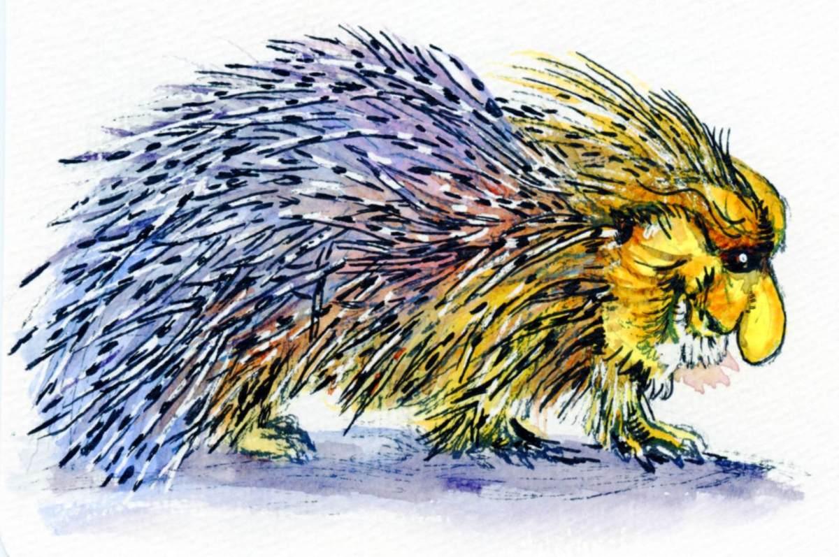 Proboscis Porcupine