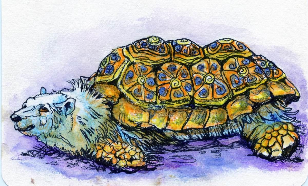 Polar Tortoise