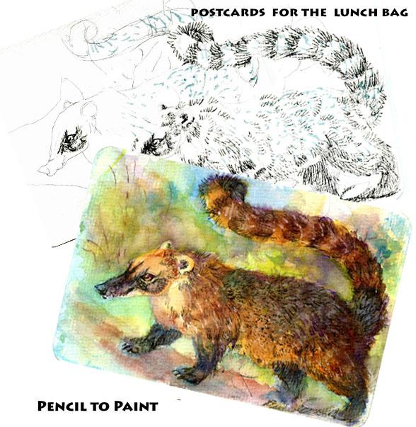 Ring-Tailed Coati: Pencil to Paintmini-tutorial