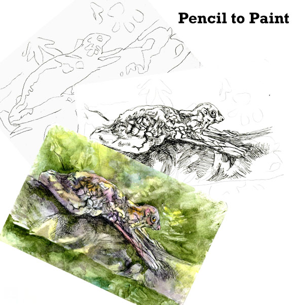 Tutorial – How to Paint a Flying Lemur #WorldWatercolorMonth