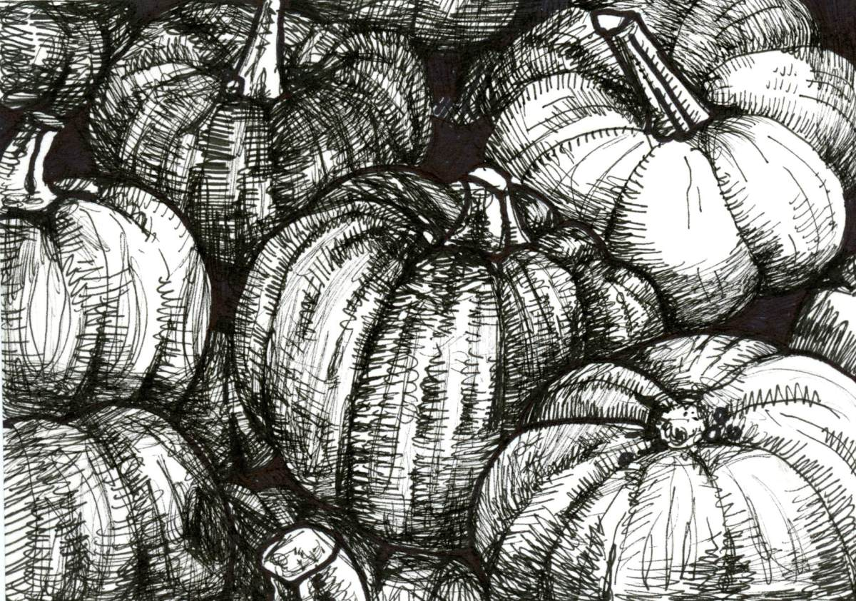 Ripe Pumpkin for Inktober