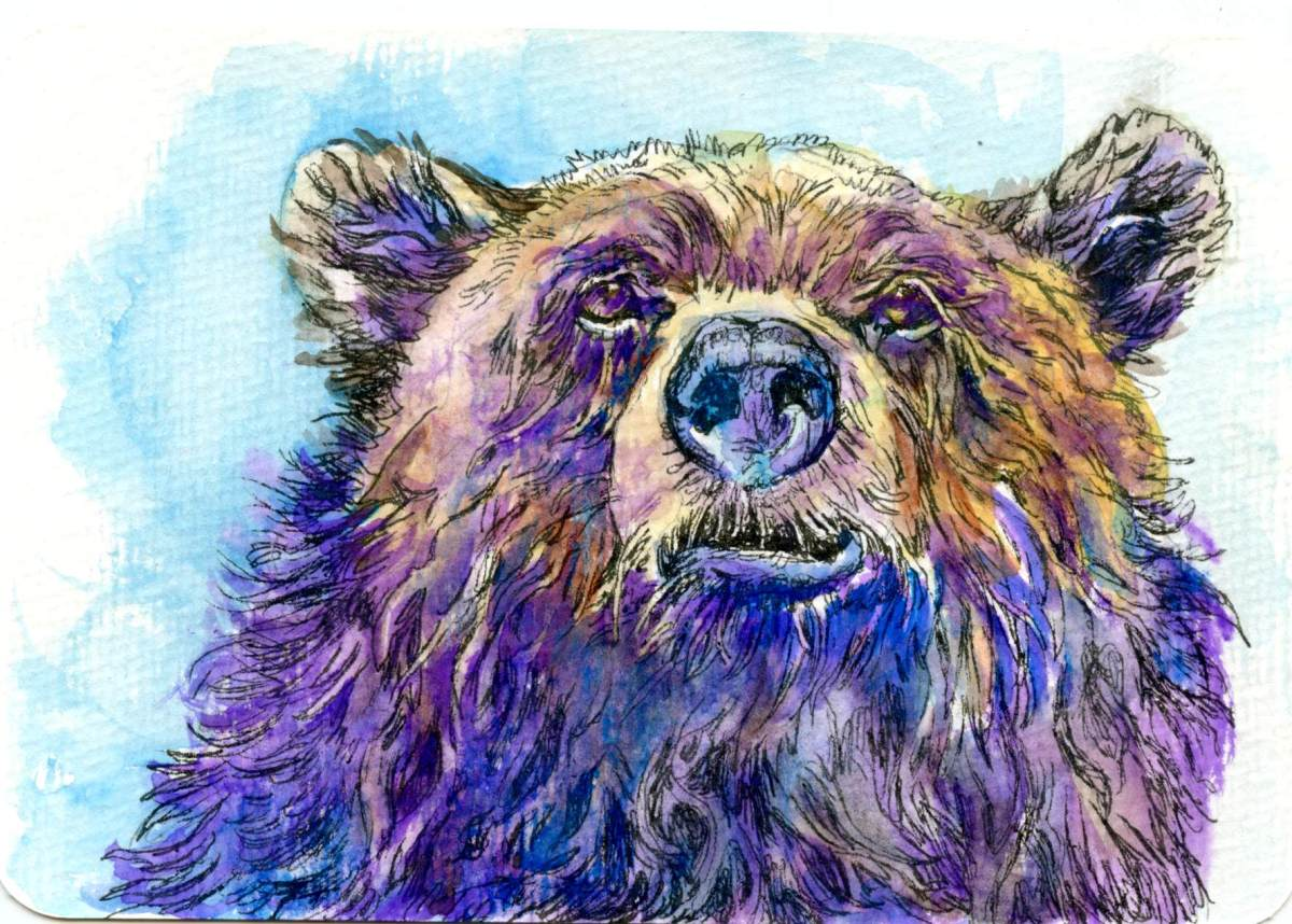 Bear Faced – Postcards for the Lunch Bag
