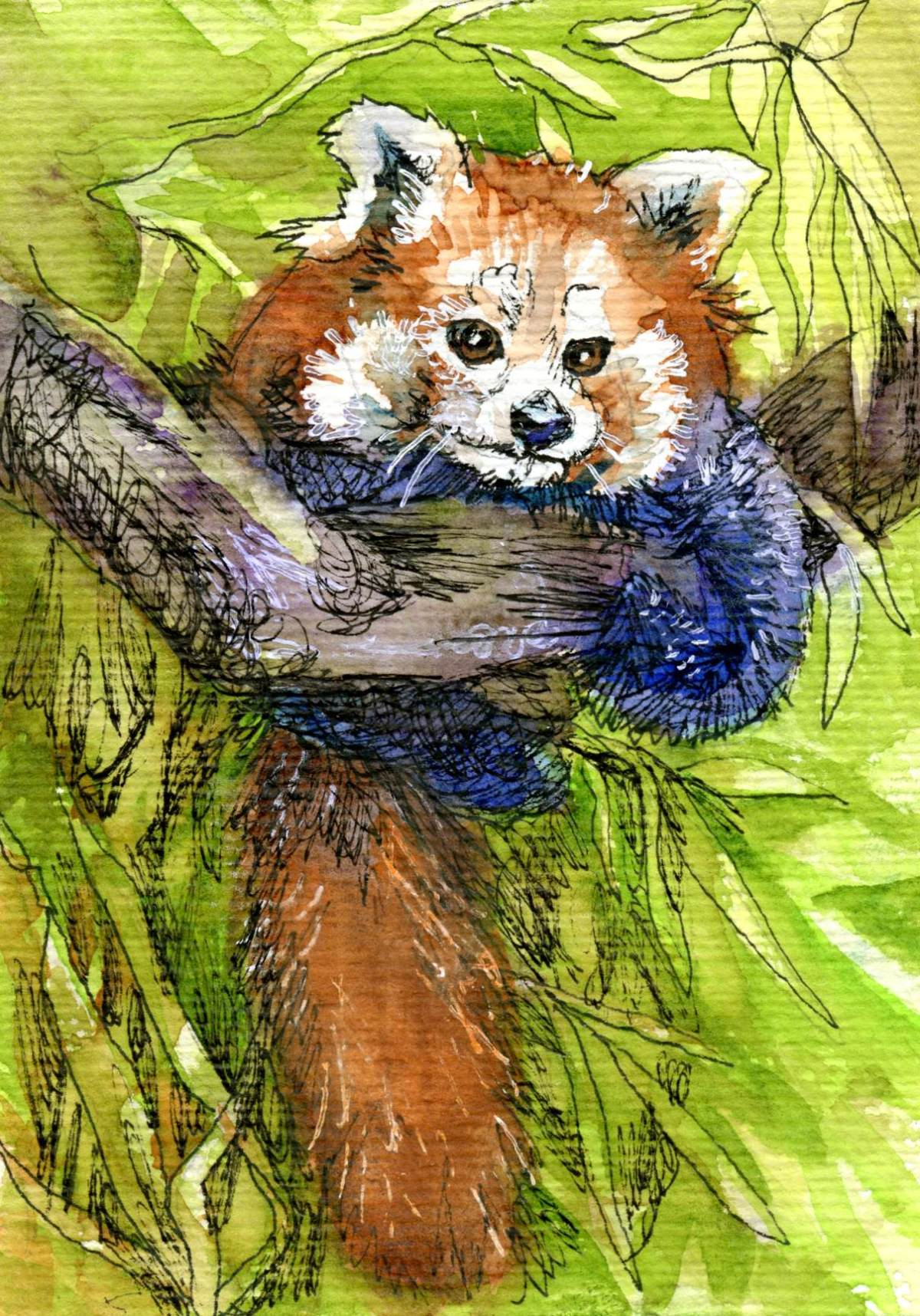 Red Panda Repeat – Postcards for the Lunch Bag
