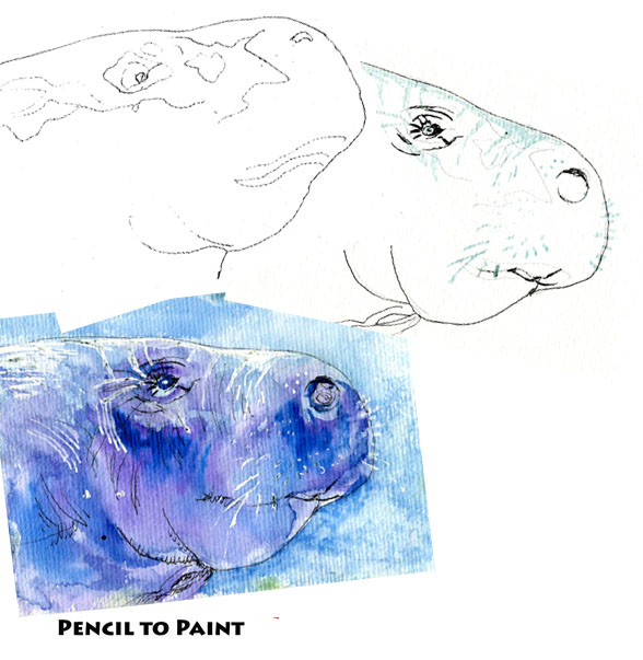 Manatee – Pencil to Paint Tutorial