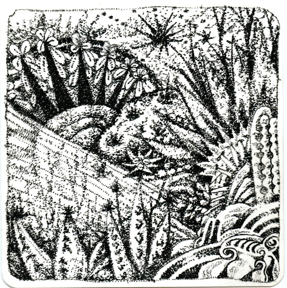 Unbelievable Cactus In Stippling