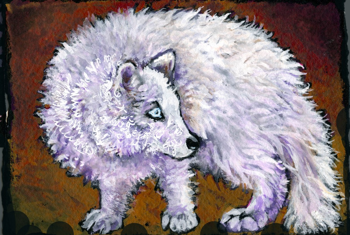 Arctic Fox – Postcards for the Lunch Bag