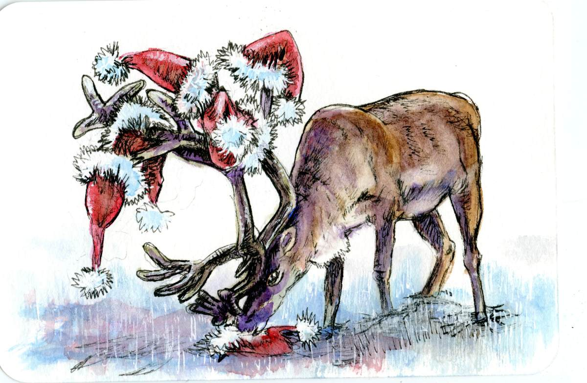 Hatter the Reindeer- Postcards for the LunchBag
