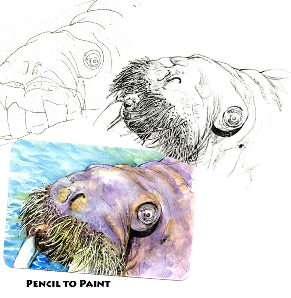 A Proliferation of Whiskers – Pencil to Paint Tutorial