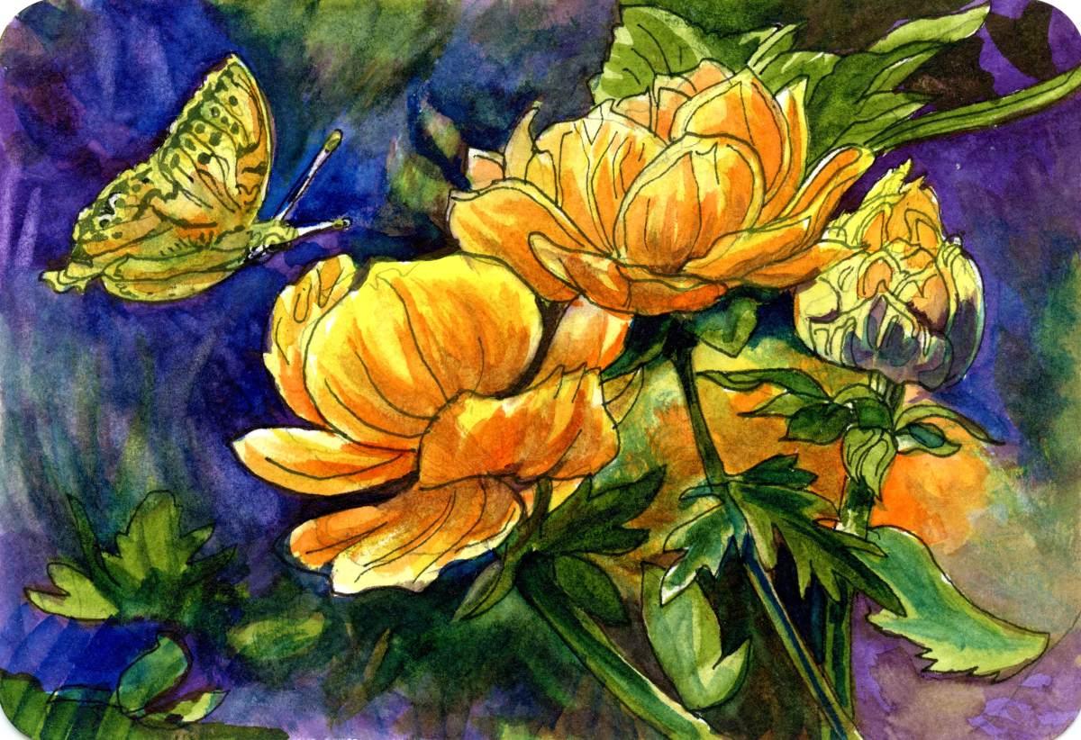 Butterfly with Flowers – Postcards for the LunchBag