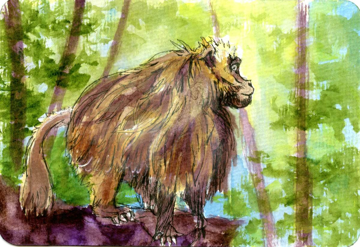 Bleeding Heart baboon – Postcards for the LunchBag
