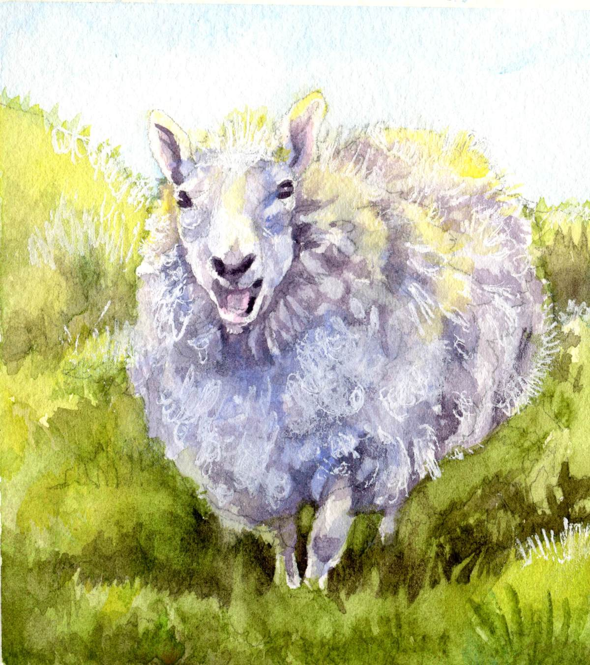 Live Life Like the Gate was Left Open – Counting Sheep#7