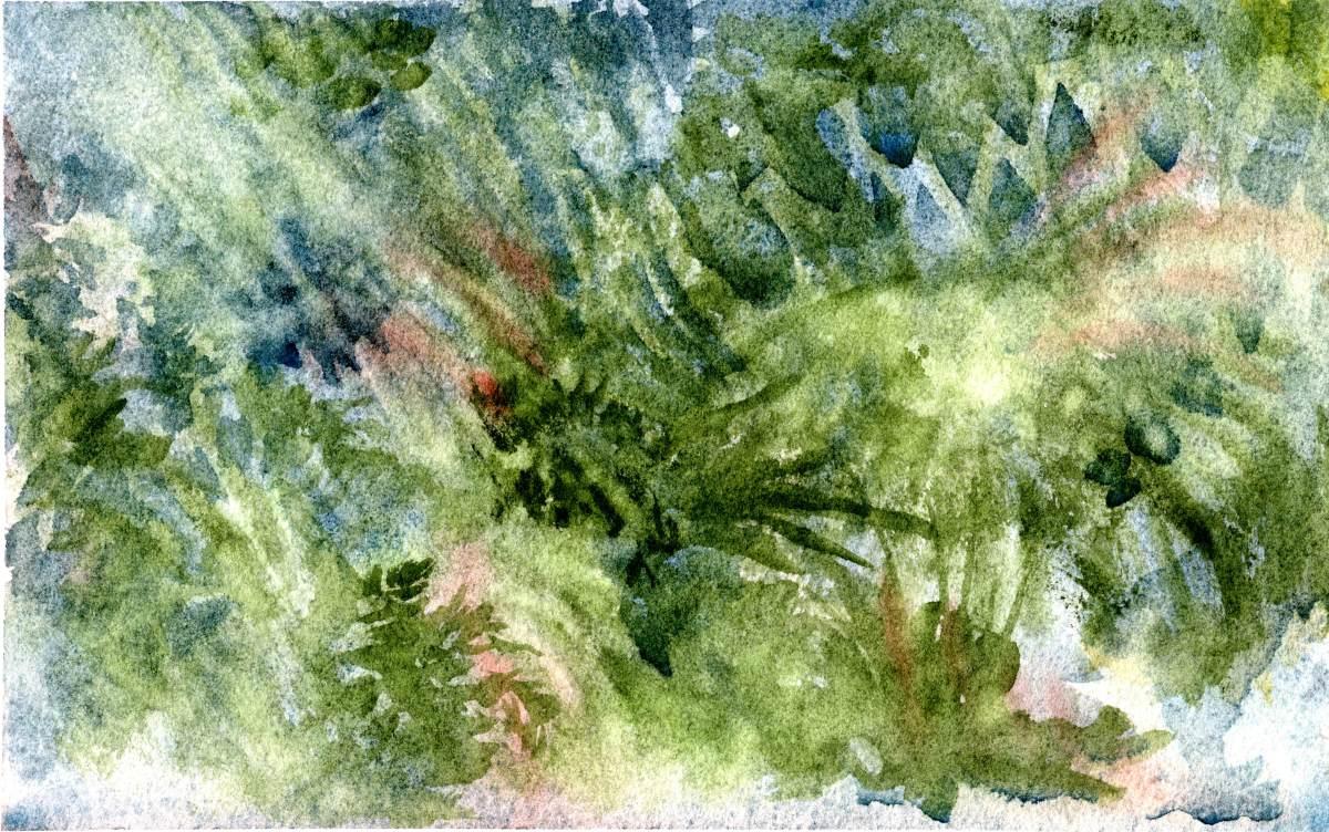 Painting rain forAustralia