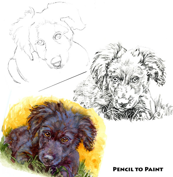 Puppy! – Pencil to Paint Tutorial