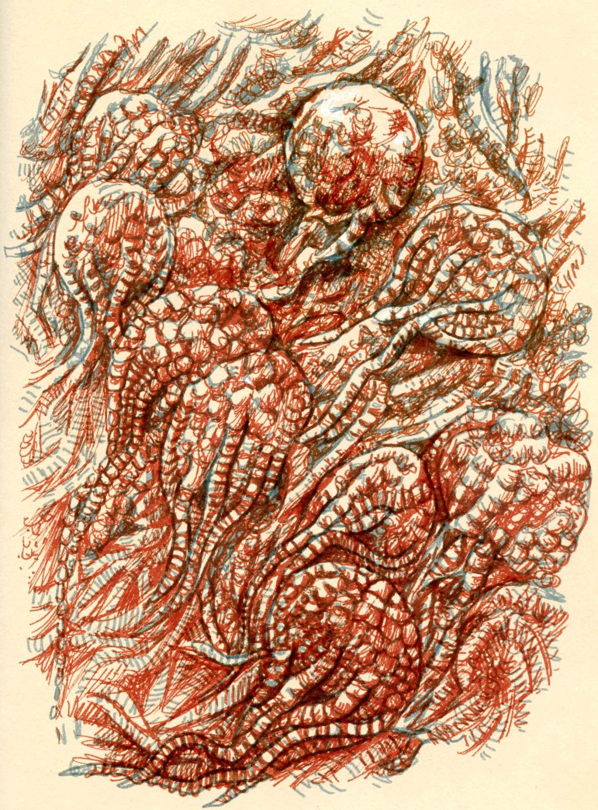 Crinoid Limestone