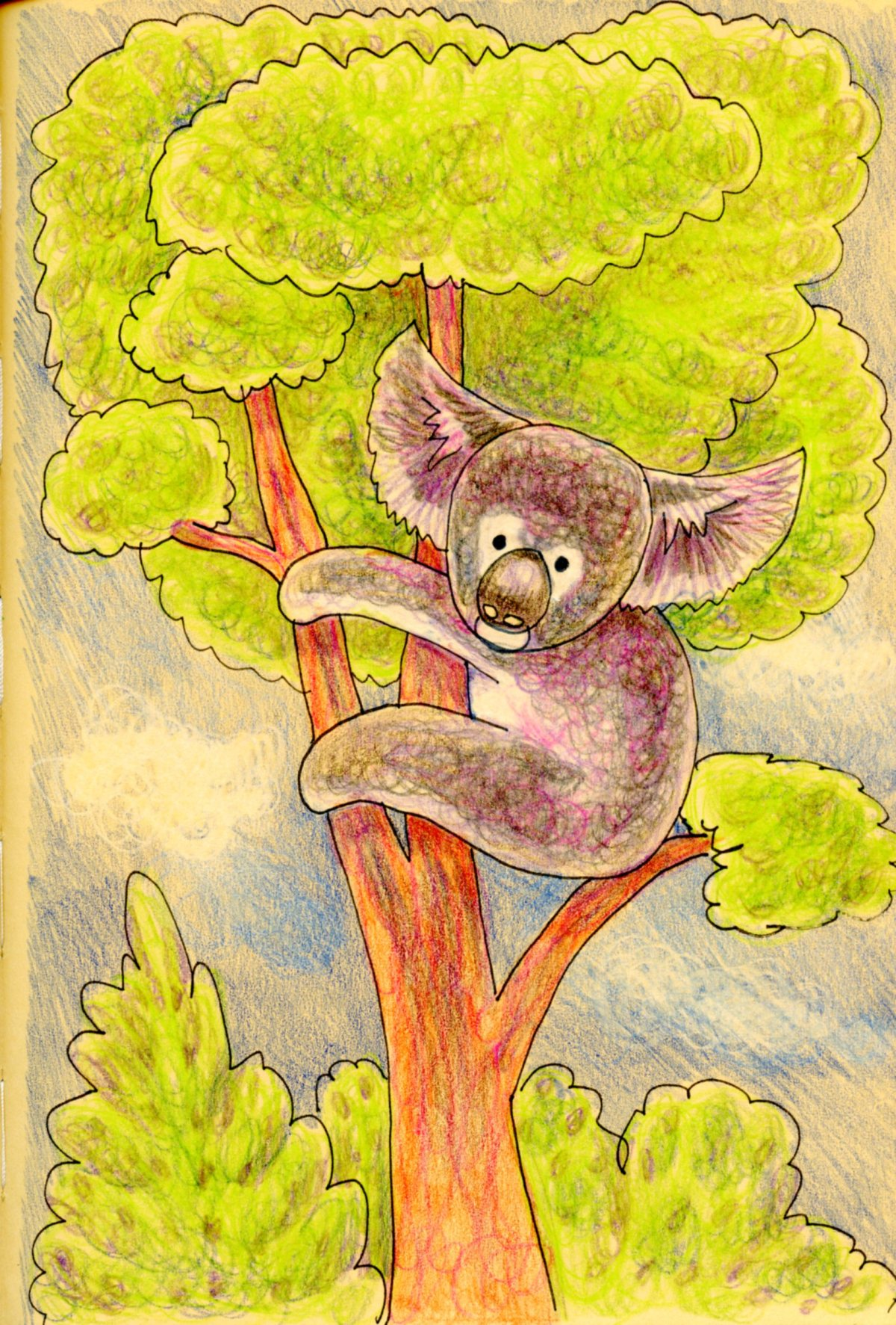 How to Draw a Koala Bear-Fun & Easy Tutorial and Challenge