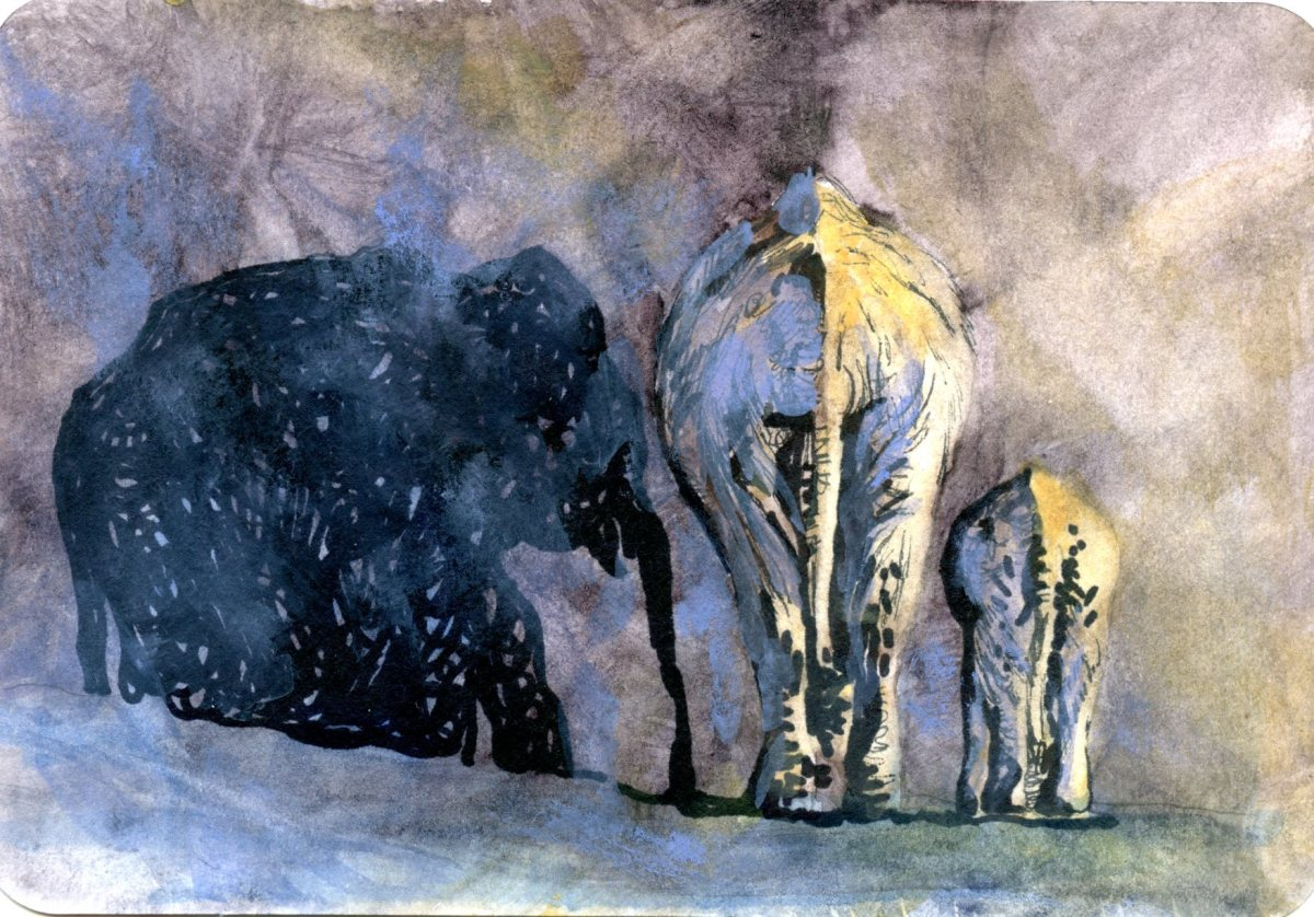 Elephants Walk Through the Quiet Night