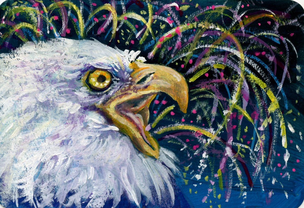 American Bald Eagle -Postcards for the Lunch Bag